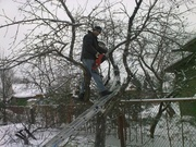 Произведём зимнюю и раннее весеннюю обрезку сада.